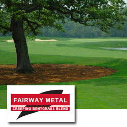 JF FAIRWAY METAL